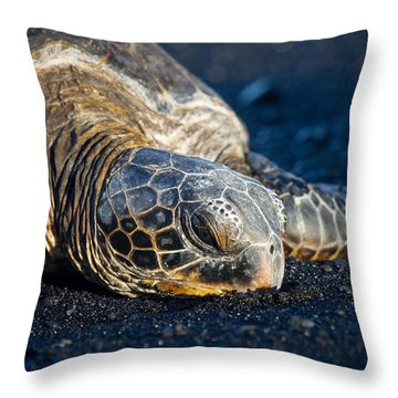 Black Sand Nap Throw Pillow
