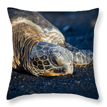 Black Sand Nap Throw Pillow by Denise Bird