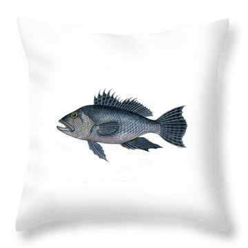 Black Sea Bass 3 Throw Pillow