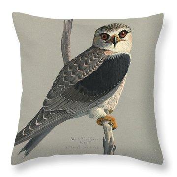 Black Shouldered Kite Throw Pillow
