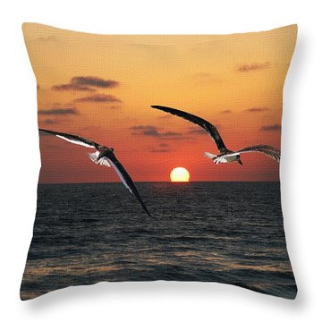 Black Skimmers At Sunset Throw Pillow by Tom Janca