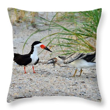 Throw Pillow featuring the photograph Black Skimmers by Dana Sohr