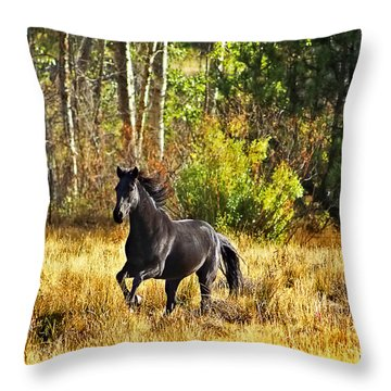 Black Stallion Runs Free Throw Pillow