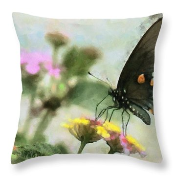 Black Swallowtail Throw Pillow by Lorri Crossno