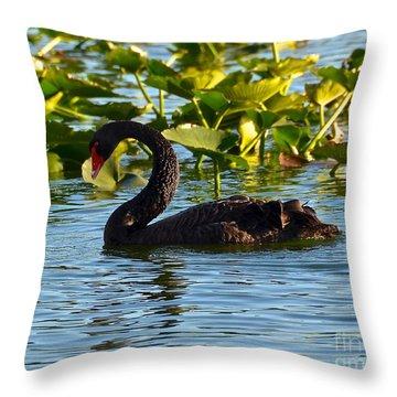 Black Swan Swimming Throw Pillow