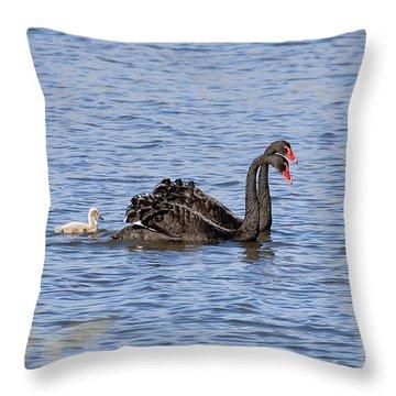 Black Swans Throw Pillow by Steven Ralser