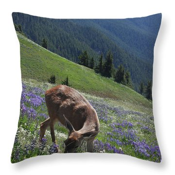 Black-tailed Deer And Lupines Throw Pillow