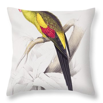 Black Tailed Parakeet Throw Pillow by Edward Lear