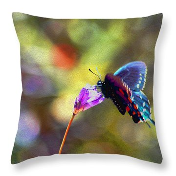 Throw Pillow featuring the photograph Black Willowtail Butterfly by William Havle