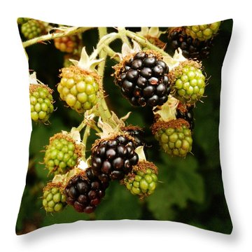 Blackberries Throw Pillow