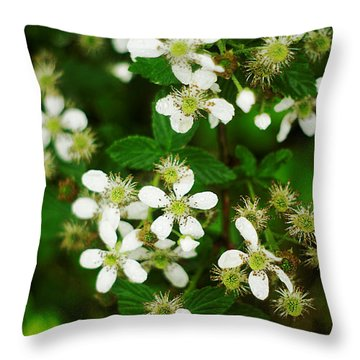 Throw Pillow featuring the photograph Blackberry Blossoms by Suzanne Powers