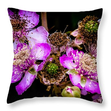 Blackberry Flower Throw Pillow by Edgar Laureano