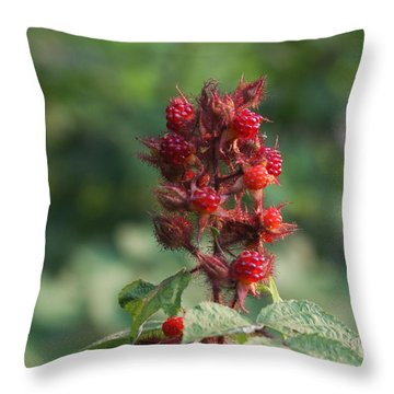 Throw Pillow featuring the photograph Blackberry Shrub by Vadim Levin