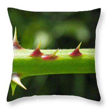 Blackberry Thorns Throw Pillow by Tikvah's Hope