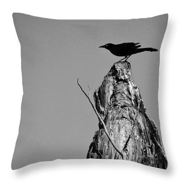 Blackbird Throw Pillow by David Mckinney