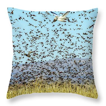 Blackbirds And Geese Throw Pillow