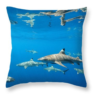 Throw Pillow featuring the photograph Blacktips by Aaron Whittemore