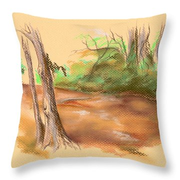 Blackwater Creek Throw Pillow by MM Anderson