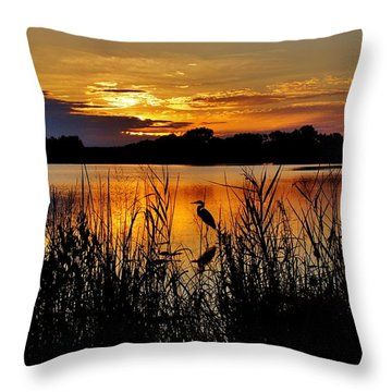 Blackwater Morning Throw Pillow by Robert Geary