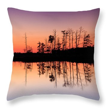 Blackwater Reflections Throw Pillow