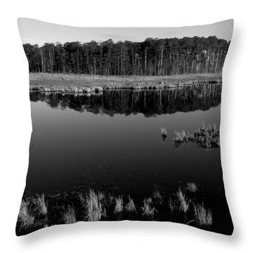 Blackwater  Throw Pillow