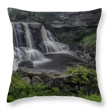 Blackwater Watercolor Throw Pillow