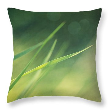 Blades Of Grass Bathing In The Sun Throw Pillow