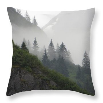Blanket Of Fog Throw Pillow by Jennifer Wheatley Wolf