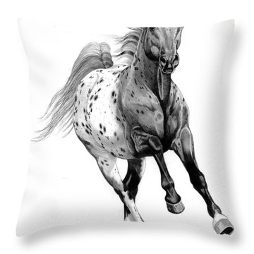 Blanketed Appaloosa  Throw Pillow by Cheryl Poland