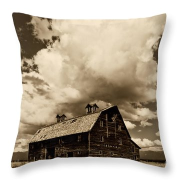 Blasdel Barn Throw Pillow