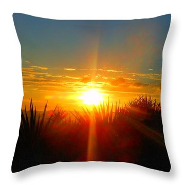 Blaze In The Desert Throw Pillow