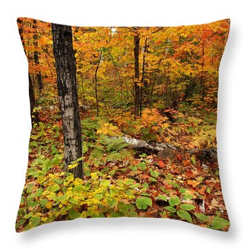 Blazing Forest Throw Pillow