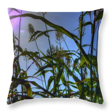 Throw Pillow featuring the photograph Blazing Rays by Tyson Kinnison