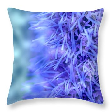 Blazing Star - Liatris Throw Pillow