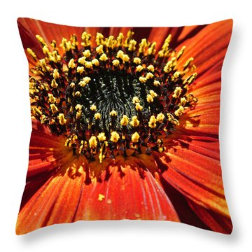 Blazing Sunflower Throw Pillow