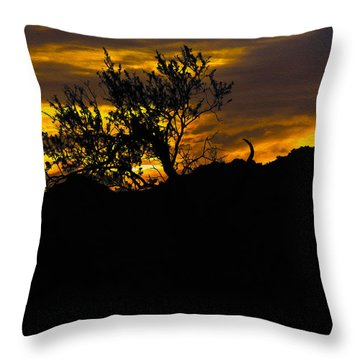 Blazing Sunset Throw Pillow
