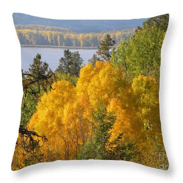 Blazing Yellow Throw Pillow