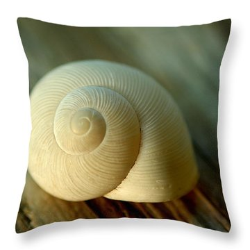 Throw Pillow featuring the photograph Bleached by Greg Allore