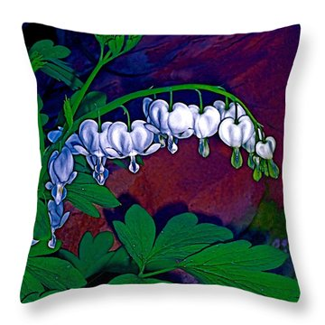 Bleeding Heart 1 Throw Pillow