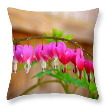 Graceful Arch Of Bleeding Heart Throw Pillow by Patti Whitten