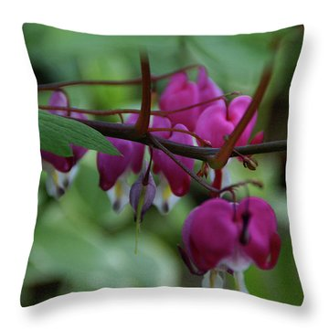 Throw Pillow featuring the photograph Bleeding Heart by Linda Shafer