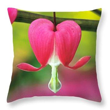 Bleeding Heart Throw Pillow by Rona Black