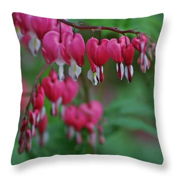 Throw Pillow featuring the photograph Bleeding Hearts 2 by Henry Kowalski