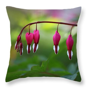 Throw Pillow featuring the photograph Bleeding Hearts by Annie Snel