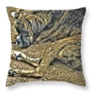 Blending In Throw Pillow by April Patterson