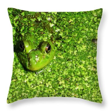 Blending Throw Pillow by Jeff Klingler