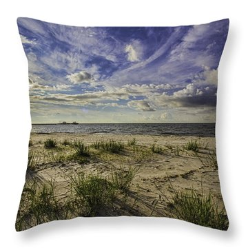 Blessed View Throw Pillow by Brian Wright