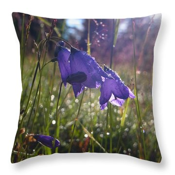 Throw Pillow featuring the photograph Blessing Of A New Day by Agnieszka Ledwon