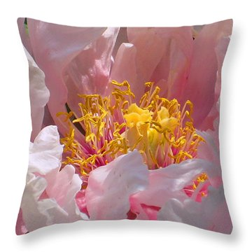 Throw Pillow featuring the photograph Blessings And Blossoms  by Cindy Greenstein