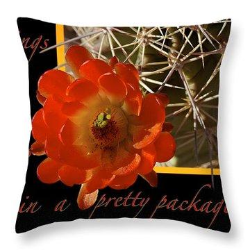 Blessings Throw Pillow by Phyllis Denton